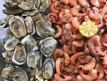 Στρείδια στη μισή Shell και φρέσκες γαρίδες στοκ φωτογραφίες