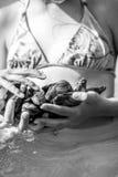 Στρείδια στο χέρι Στοκ φωτογραφία με δικαίωμα ελεύθερης χρήσης