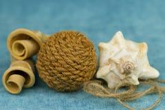 Στριμμένα κομμάτια του ξύλου, του θαλασσινού κοχυλιού και μιας σφαίρας του σχοινιού στοκ εικόνα