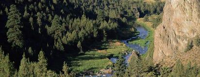 στριμμένος βράχος Smith ποταμών Στοκ Φωτογραφία