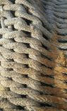 Στριμμένο σχοινί για την αλιεία Στοκ Εικόνες