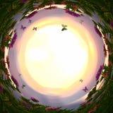 στροβιλισμένο περίληψη υπόβαθρο των μαγικών λουλουδιών και των πεταλούδων παραμυθιού στο φως ηλιοβασιλέματος Στοκ εικόνες με δικαίωμα ελεύθερης χρήσης