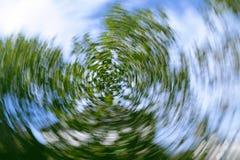 Στροβιλιμένος δέντρο Στοκ φωτογραφία με δικαίωμα ελεύθερης χρήσης