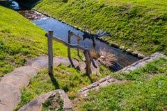 Στρογγυλά ξύλινα βήματα με τις διακοσμητικές διακοσμήσεις, που κατεβαίνουν σε ένα μικρό κανάλι ποταμών Στοκ φωτογραφία με δικαίωμα ελεύθερης χρήσης