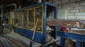 Στρογγυλή ταξινομώντας επεξεργασία προετοιμασιών κούτσουρων ξυλείας στο πριονιστήριο φιλμ μικρού μήκους