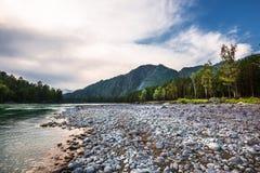 Στρογγυλευμένες πέτρες στην ακτή του ποταμού Katun Βουνό Altai, στοκ εικόνες