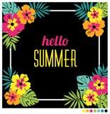 Στρογγυλευμένο καλοκαίρι πλαίσιο μορφής Στοκ Εικόνες