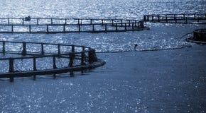 Στρογγυλά κλουβιά του νορβηγικού αγροκτήματος ψαριών Στοκ Φωτογραφίες