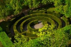 Στρογγυλός πράσινος θάμνος λαβύρινθων μορφής στο Λουξεμβούργο Στοκ Εικόνες