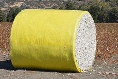 Στρογγυλό δέμα του βαμβακιού στοκ φωτογραφία με δικαίωμα ελεύθερης χρήσης