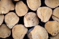 Στρογγυλό υπόβαθρο ξυλείας Στοκ φωτογραφία με δικαίωμα ελεύθερης χρήσης