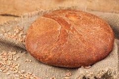 Στρογγυλό φρέσκο ψωμί Στοκ φωτογραφία με δικαίωμα ελεύθερης χρήσης