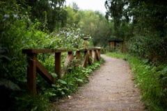 στροφή στο πάρκο Στοκ εικόνες με δικαίωμα ελεύθερης χρήσης