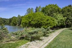 Στρωμένοι ο Stone δρόμος και δέντρα από τη λίμνη στοκ εικόνες με δικαίωμα ελεύθερης χρήσης