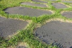 Στρωμένος ο Stone δρόμος με τη χλόη στοκ εικόνες