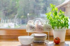 Στρωματοειδής φλέβα της κουζίνας Στοκ εικόνες με δικαίωμα ελεύθερης χρήσης