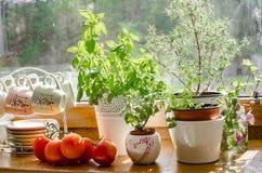 Στρωματοειδής φλέβα της κουζίνας Στοκ εικόνα με δικαίωμα ελεύθερης χρήσης