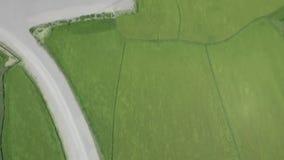 Στρόβιλος αιολικής ενέργειας στο εναέριο τοπίο ενεργειακών σταθμών οικολογίας Ανεμοστρόβιλος στην πράσινη άποψη κηφήνων τομέων χλ απόθεμα βίντεο