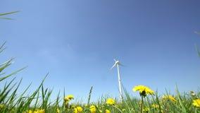 Στρόβιλος γεννητριών αιολικής ενέργειας και κίτρινη κίνηση λουλουδιών πικραλίδων στον αέρα φιλμ μικρού μήκους