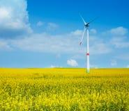 Στρόβιλος ηλεκτρικής ενέργειας αιολικής ενέργειας Στοκ Φωτογραφίες