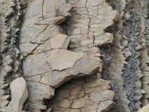 Στρώματα του βράχου και του ιζήματος στον παράκτιο βράχο στοκ εικόνες