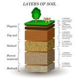 Στρώματα του χώματος, διάγραμμα εκπαίδευσης Ορυκτές μόρια, άμμος, φυτόχωμα και πέτρες Στοκ Φωτογραφία