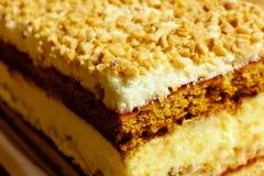 στρώμα κέικ Στοκ Φωτογραφίες