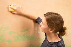 Στρώνοντας με άμμο τοίχος Στοκ Φωτογραφία
