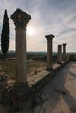 Στυλοβάτες των ρωμαϊκών καταστροφών, Volubilis, Μαρόκο Στοκ εικόνα με δικαίωμα ελεύθερης χρήσης