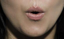 στόμα ανοικτό στοκ φωτογραφίες με δικαίωμα ελεύθερης χρήσης