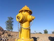 στόμιο υδροληψίας πυρκαγιάς κίτρινο στοκ εικόνες