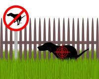 Στόχος σκυλιών Στοκ Φωτογραφία