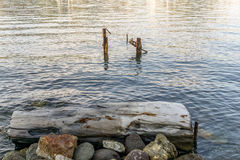 Στύλοι στη θάλασσα Στοκ Φωτογραφίες