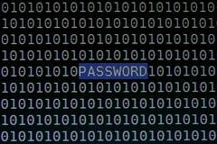 Συγκέντρωση του κειμένου κωδικού πρόσβασης στη οθόνη υπολογιστή Στοκ εικόνα με δικαίωμα ελεύθερης χρήσης