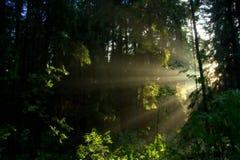 Συγκεκαλυμμένος ήλιος Στοκ φωτογραφία με δικαίωμα ελεύθερης χρήσης