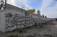 Συγκεκριμένη ζούγκλα Στοκ φωτογραφίες με δικαίωμα ελεύθερης χρήσης