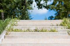 Συγκεκριμένη σκάλα στο πάρκο πόλεων που εισβάλλεται με μια πράσινη χλόη στοκ φωτογραφίες