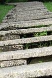 Συγκεκριμένη σκάλα που κάμπτει στο άπειρο με τα πολύ χαμηλά βήματα Στοκ Φωτογραφίες