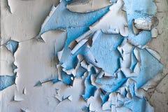 συγκεκριμένος τοίχος αποφλοίωσης χρωμάτων Στοκ Εικόνες