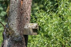 Συγκεκριμένο σπίτι πουλιών Στοκ εικόνες με δικαίωμα ελεύθερης χρήσης