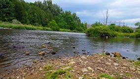 Συγκεκριμένο φράγμα νερού στην απόσταση με τον όμορφο ρέοντας ποταμό Άποψη από την ακτή ποταμών απόθεμα βίντεο