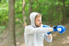 Συγκεντρωμένα αθλητικός τύπος εγκιβωτίζοντας γάντια κατάρτισης Η επίθεση ή υπερασπίζει πάντα είναι έτοιμη Συγκεντρωμένα αθλητής α στοκ εικόνες με δικαίωμα ελεύθερης χρήσης