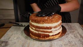 Συγκεντρώνοντας τα στρώματα κέικ καρύδι-μπανανών, λερώνοντας με το σιρόπι, που εφαρμόζει τη βουτύρου κρέμα απόθεμα βίντεο