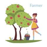 Συγκεντρώνοντας τη συγκομιδή - επίπεδη απεικόνιση ύφους σχεδίου Σύνθεση με ένα χαριτωμένο κορίτσι που συλλέγει τα μήλα από το δέν στοκ εικόνα με δικαίωμα ελεύθερης χρήσης