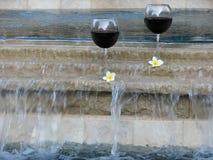 συγκεντρώστε το κρασί Στοκ Εικόνες
