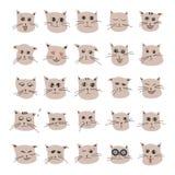 Συγκινήσεις της χαριτωμένης γάτας κινούμενων σχεδίων Στοκ Εικόνα