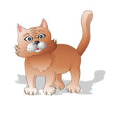 Συγκινήσεις των ζώων Η έκπληκτη κόκκινη γάτα Στοκ εικόνες με δικαίωμα ελεύθερης χρήσης