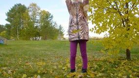 Συγκινημένος η ρίψη κοριτσιών επάνω στα κίτρινα φύλλα στο πάρκο φθινοπώρου απόθεμα βίντεο