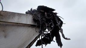 Συγκολλητικά απόβλητα στο φτυάρι εκσκαφέων, ανασκαφή από ένα κοίλωμα επάνω Στοκ φωτογραφίες με δικαίωμα ελεύθερης χρήσης