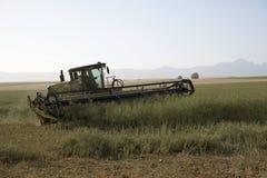 Συγκομίζοντας νοτιοαφρικανικό αγρόκτημα Canola Στοκ Εικόνες